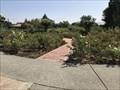 Image for Cowden Rose Garden - Walnut Creek, CA