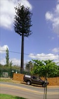 Image for Disguised cell tower Silverlakes, Pretria, ZA
