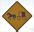 Image for Horse and Buggy on the Highway