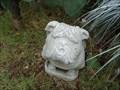 Image for Missimo Bulldog - Fort Worth, TX