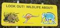Image for Wildlife, Scotts Head, NSW, Australia