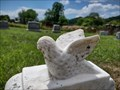 Image for Annie M. Moore ~ Bellamy Cemetery ~ Hawkins County, Tennessee - USA.
