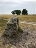 Image for Humming Stone - Møn, Danmark