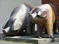 Image for Two pigs - Prestice, Czech Republic