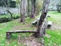 Image for Otter bench - A Valenzá, Barbadás, Ourense, Galicia, España