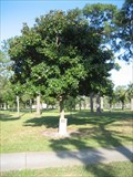 Image for Oklahoma City Bombing Memorial - Bay Pines, FL