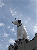 "Image for Nipper, the RCA Dog - ""Word, Dawg"" - Albany, NY"