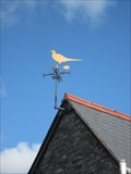 Image for Pheasant, The Golden Pheasant, Llwynmawr, Llangollen, Wrexham, Wales, UK