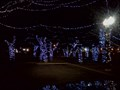 Image for Falls Park Christmas Display - Sioux Falls, SD