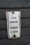 Image for TB 1915-33 Sadek