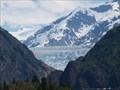 Image for South Sawyer Glacier - Alaska