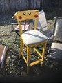 Image for Pikachu - Chairy Orchard - Denton Texas