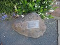 Image for Paul P Tam, MD - Hayward, CA