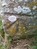 Image for Benchmark, St Peter - Freston, Suffolk