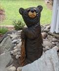 Image for Three bears - Binghamton, NY