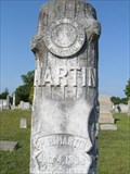 "Image for Pinkney Hanna ""Paul"" Martin - New Prospect Baptist Cemetery, Laurens County, SC"