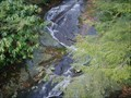 Image for Roadside Waterfall, Blue Ridge Parkway (NC)