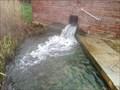 Image for La source d'eau chaude d'Incarville