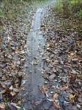 Image for Wahlfield Park Footbridge 13 - Comstock Park, Michigan