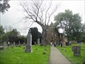 Image for Beauly Priory Cemetery - Beauly, Scotland