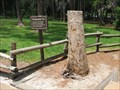 Image for The Lawnmower Tree - Disney World, FL