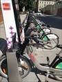 Image for Bixi Queen / Ottawa