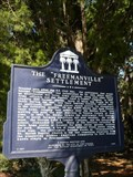 Image for The Freemanville Settlement
