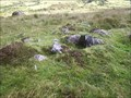 Image for Granite Cist, East of Newleycombe, South Dartmoor,