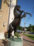 Image for A Horse With No Name  -  Mineola, NY