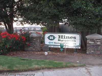Hines Nursery Irvine Ca