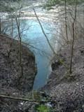 Image for Roaring River Spring