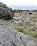Image for Fionn MacCumhaill - Giant's Causeway - County Antrim, Northern Ireland.