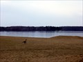 Image for Pymatuning State Park Beach No. 1