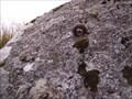 Image for Tavy Head Ring Rock, North Dartmoor, Devon UK