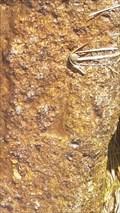 Image for Benchmark & rivet - Bullseye Stone, Grimstone and Sortridge leat - Dartmoor, Devon