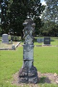 Image for George McGee -- Rose Hill Cemetery, Hope AR