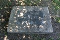 Image for Frost, Texas Centennial Time Capsule - Frost, TX