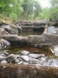 Image for Salmon Run, Afon Ogwen, Bethesda, Gwynedd, Wales