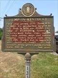 Image for Clark County Hemp