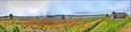 Image for Skyline Drive - Big Meadows - Syria, VA