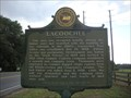 Image for Lacoochee