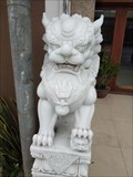 Image for Shop Lions—Da Nang City, Vietnam