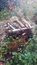Image for 'The Spinney' Bug Hotel - Church Lane - Sutton Waldron, Dorset