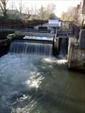 Image for Greenham Mill - Kennet Millennium Salmon Pass