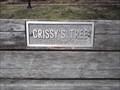 Image for Crissy's Tree - Wilson Park - Fayetteville AR