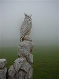 Image for Owl in the fog,  Braunwald - Switzerland