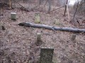 Image for Othaniel Castlio Cemetery - Busch Convervation Area - St. Charles County, Missouri