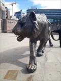 Image for Tigeren på Jernbanetorget - The Tiger, Oslo - Norway