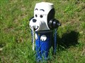 Image for Blue dog Hydrant - New Calisle, Quebec, Canada