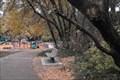 Image for Barbara Lee Distefano bench - Felton, California